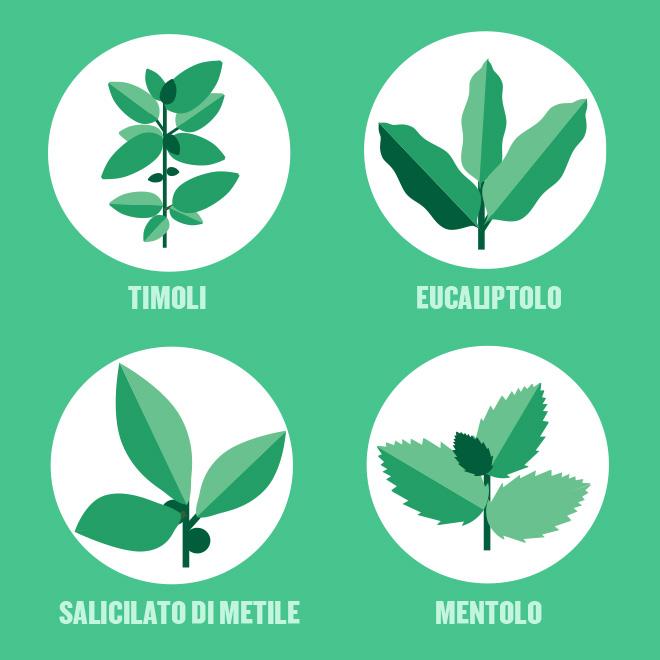 Icone di 4 oli essenziali